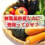 無農薬野菜の危険とは!天然の農薬を生成?